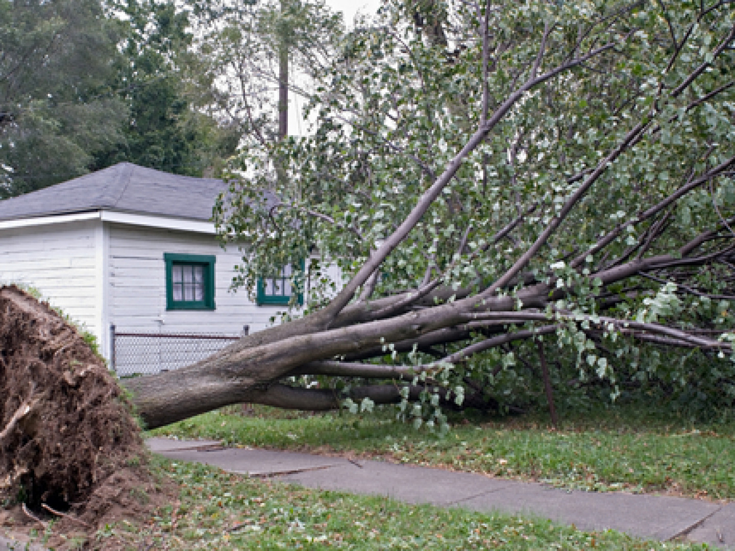 Get Fast Storm Damage Roof Replacement Services